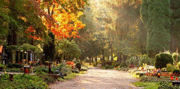 Ein Friedhof mit vielen Bäumen, Gräber sind zu erkennen