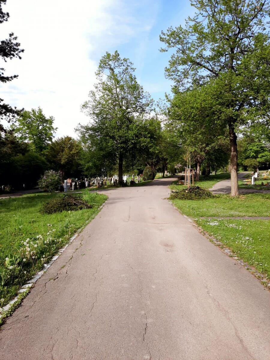 Friedhof Untertürkheim Gehweg mit Grabfeldern vorne