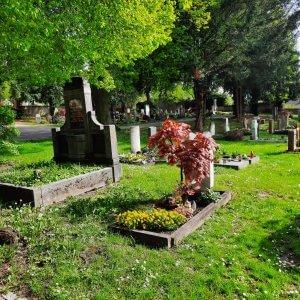 Friedhof Untertürkheim Grabstätte