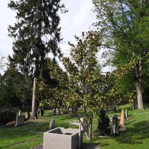 Friedhof Untertürkheim Stuttgart Wasserstelle