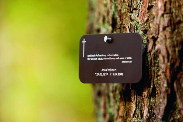Baumbestattung - Baum mit Schild, ein Grab im Wald